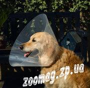 Груминг,  все для груминга  собак и кошек Запорожье Украина недорого