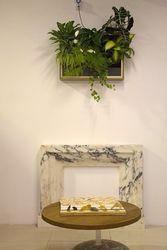 Картины из живых растений,  вертикальное озеленение интерьеров